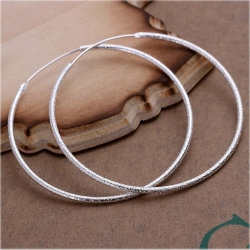 Hoop Silver Plated Earrings