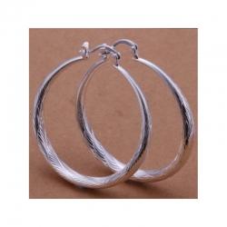 Hoop Silver Plated Earrings