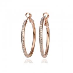 Gold Tone Crystals Hoop Earrings