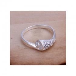 Ring Snail