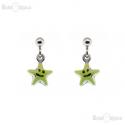 Star Pendant Earrings