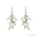 Cluster Pearls Silver Earrings